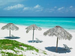 white sand beach and ocean