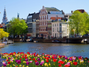 historic building, a river and tulips