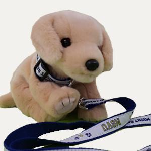 MSVU Pet Collar Leash