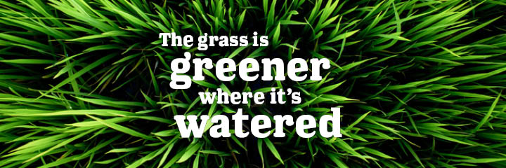"Grass surrounding the text ""The grass is greener where it's watered"""