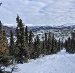 Mountains near Fairbanks