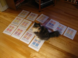 HQD TextPortraits on the floor with Rose the cat