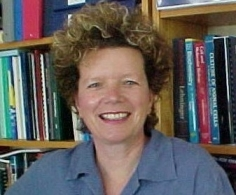 Theresa Glanville