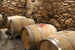 Sustainable business tour. Wine barrels. 2015