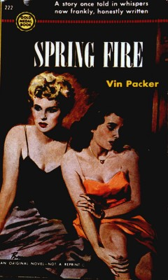 Spring Fire book cover