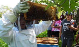 Joel Francis - Facilitating an activity about amu (the bee)