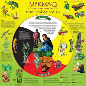 Mi'Kmaw History Month 2020 poster