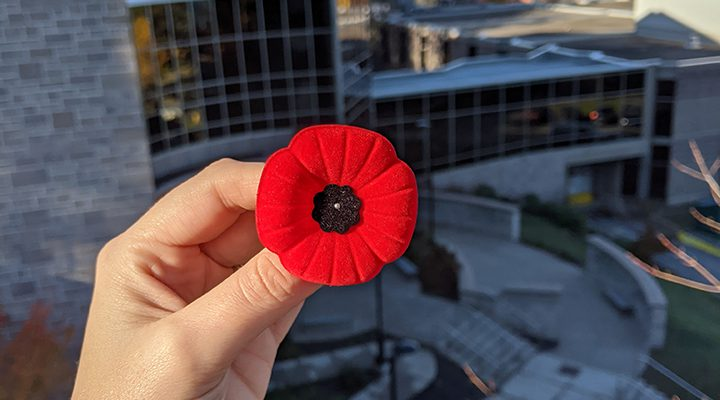 A Poppy held outside of the McCain Centre