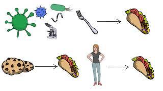 Cross contamination thumbnail image
