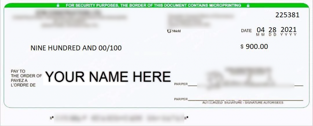 Sample Fake Cheque Image